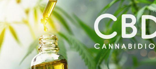 Prendre de l'huile de CBD