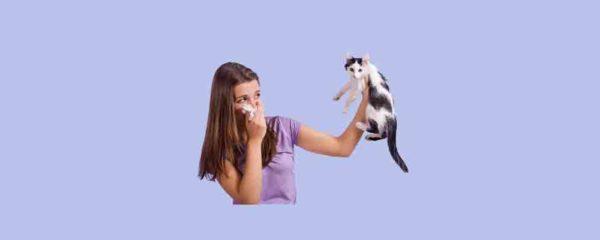 allergies aux poils d'animaux